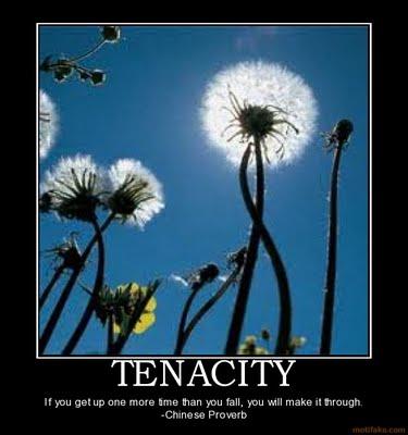 Tenacious Tuesday: You Are Responsible